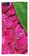 Peony And Leaf Beach Towel