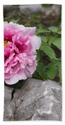 Peony On The Rocks - The Marvels Of Spring Beach Towel
