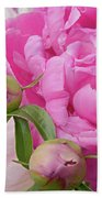 Peony Pair In Pink And White  Beach Towel