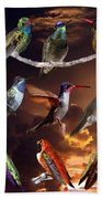 Perched Hummingbird Collage Beach Towel
