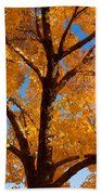 Perfect Autumn Day With Blue Skies Beach Towel