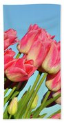 Perfect Pink Tullips Beach Towel