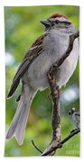 Perfect Profile - Chipping Sparrow Beach Towel