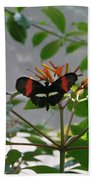 Perfect Set - Butterfly Beach Towel