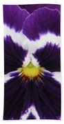 Perfectly Pansy 02 Beach Towel