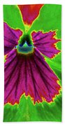 Perfectly Pansy 04 - Photopower Beach Towel