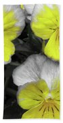 Perfectly Pansy 13 - Bw - Yellow Beach Towel