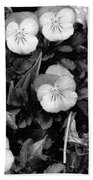 Perfectly Pansy 18 - Bw - Water Paper Beach Towel