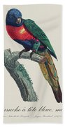 Perruche A Tete Bleue, Male / Rainbow Lorikeet, Male - Restored 19th Cent. Illustration By Barraband Beach Towel