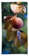 Persimmon Tree Beach Towel
