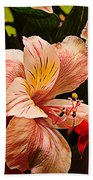 Peruvian Lily Grain Beach Towel