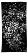 Petite Noir Petals Beach Towel