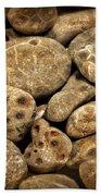 Petoskey Stones Vlll Beach Towel