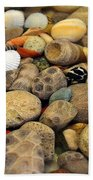 Petoskey Stones With Shells Ll Beach Towel