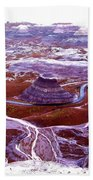 Petrified Forest Beach Towel