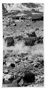 Petrified Forest National Park #2 Beach Towel