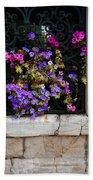 Petunias Through Wrought Iron Window Beach Towel
