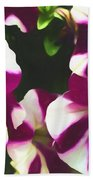 Petunias With A Flare Beach Towel