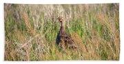Pheasant Hen Beach Towel