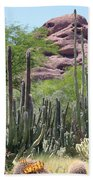 Phoenix Botanical Garden Beach Towel