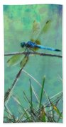 Photo Painted Dragonfly Beach Towel