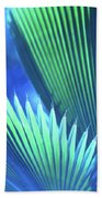 Photograph Of A Royal Palm In Blue Beach Towel