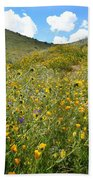 Picture Perfect Spring Beach Towel