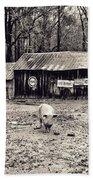 Pig Farm Lot B Beach Towel