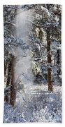 Pike National Forest Snowstorm Beach Towel