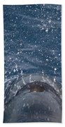 Pilot Whale 7 The Breath Beach Towel