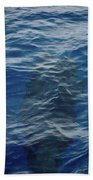 Pilot Whale 8  Beach Towel
