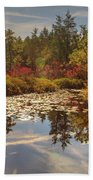 Pine Barrens New Jersey Whitesbog Nj Beach Towel