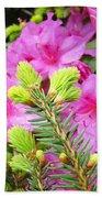 Pine Conifer Art Print Pink Azaleas Flower Garden Baslee Troutman Beach Towel