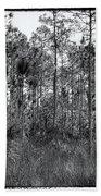 Pine Land In B/w Beach Sheet by Rudy Umans