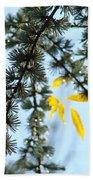 Pine Tree Art Prints Blue Sky Yellow Fall Leaves Beach Towel