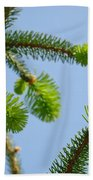Pine Tree Branches Art Prints Blue Sky Botanical Baslee Troutman Beach Towel