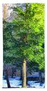 Pine Tree Forest Beach Towel