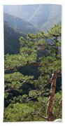 Pine Tree On Mountain Landscape Beach Towel