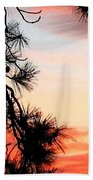 Pine Tree Silhouette Beach Towel