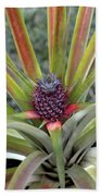 Pineapple, Oahu Beach Towel