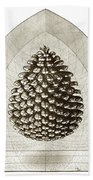 Pinecone Beach Towel by Charles Harden