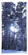 Pines 4 Beach Towel