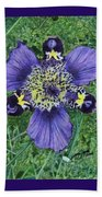 Pinewoods Lily Beach Towel