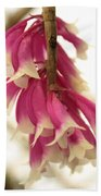 Pink And White Bells Beach Towel