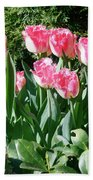 Pink And White Fringed Tulips Beach Towel
