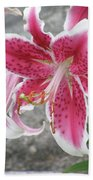 Pink And White Stargazer Lily In A Garden Beach Towel