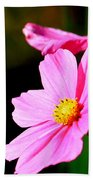 Pink And Yellow Cosmo Beach Towel
