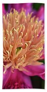 Pink And Yellow Peony Beach Towel