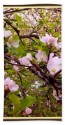 Pink Aplle Blossoms Of Spring Time Beach Towel