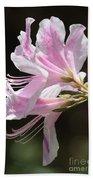 Pink Azalea Macro Beach Sheet